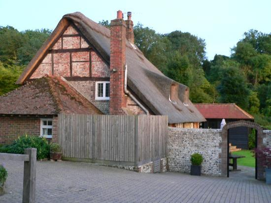 The Thatched Barn : Tatched Barn - view