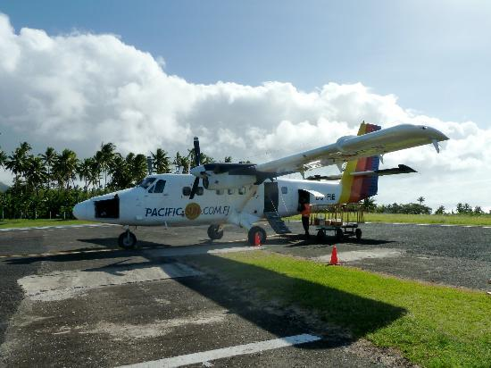 Taveuni Island Resort & Spa: the plane..