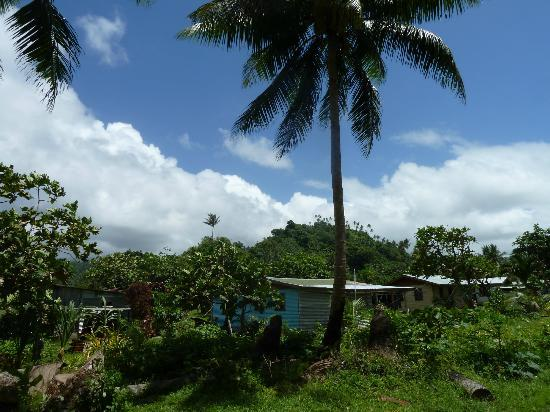 Taveuni Island Resort & Spa: Village on Coastal walk