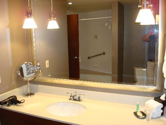 The Westin Southfield Detroit: Bathroom