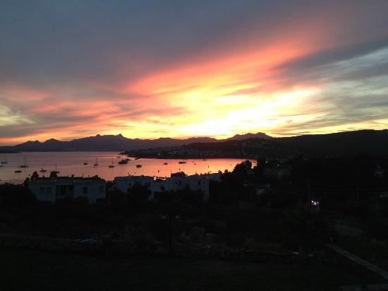 Sestra Apartments: Sestra sunset