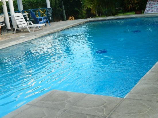 Douglas Apartments: loving the pool