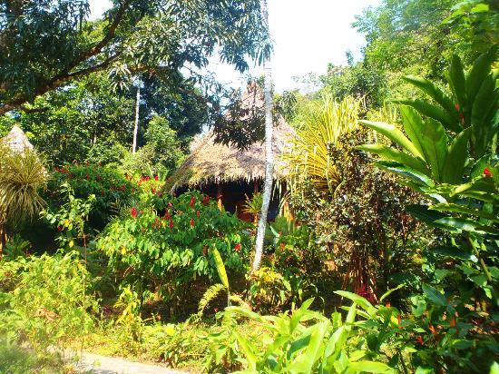 Luna Lodge: Un bungalow vu de dehors
