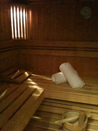 Hotel Ziegelruh: Die Sauna im Zimmer