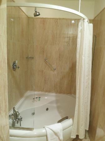 Hotel Meyrick: Shower/Tub