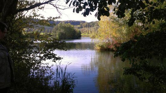 Schengen, Lussemburgo: Wunderschönes Naturschutzgebiet zum spazieren und geniessen.
