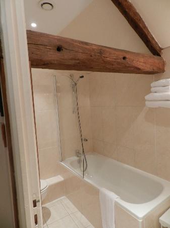 Hotel le Clos d'Amboise: Chamber 016 bath/shower combo