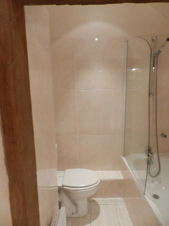Hotel le Clos d'Amboise: Shower (chamber 016)