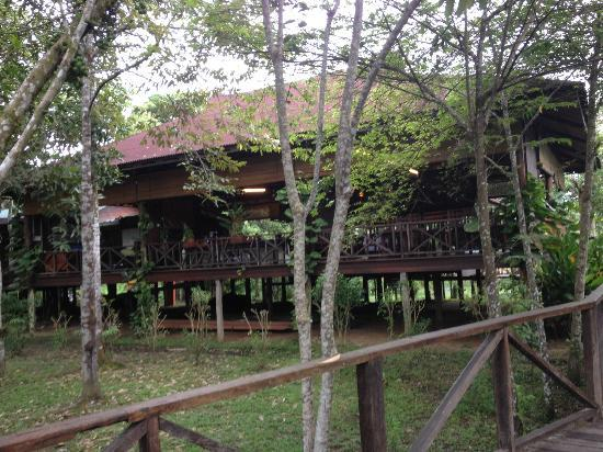 Bilit Rainforest Lodge: Main Lobby