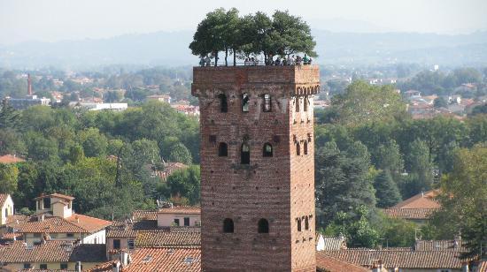 Guinigi Tower照片