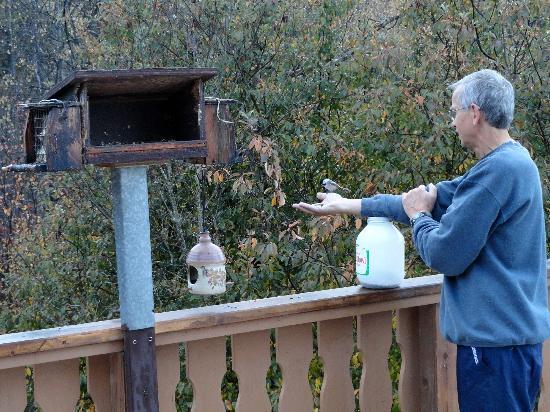 Chickadee Acres Bed & Breakfast: John feeding the birds