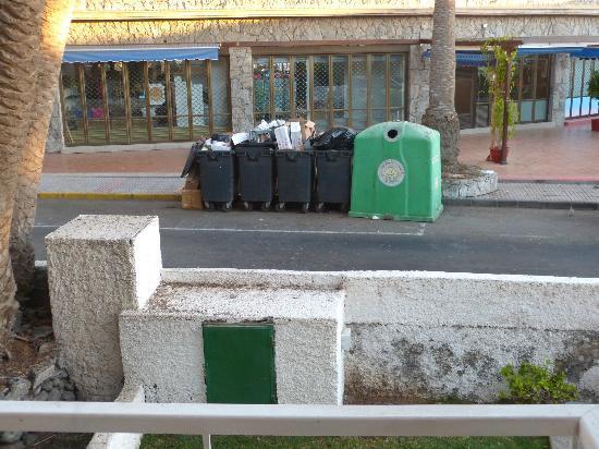 Oasis Maspalomas: The noisy bins
