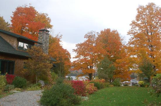 Prospect Point Cottages - Blue Mountain Lake: view of the grounds