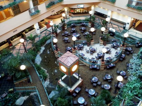 Embassy Suites by Hilton Raleigh - Durham/Research Triangle : Atrium