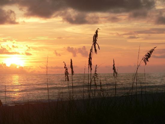 Longboat Bay Club : Sunset on beach right across the street