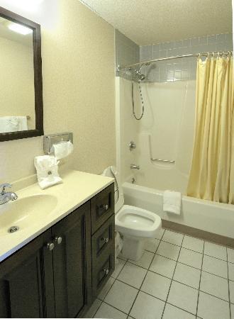 Regency Inn and Suites West Springfield: Bathroom Dual Shower Heads