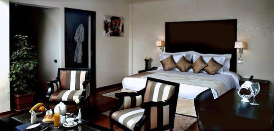 Park Suites Hotel: Suite Junior