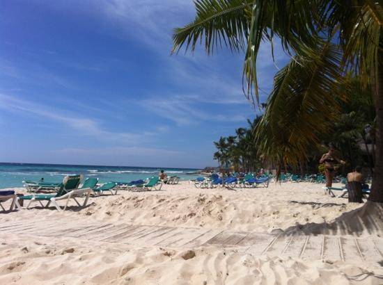 Viva Wyndham Dominicus Beach: la spiaggia