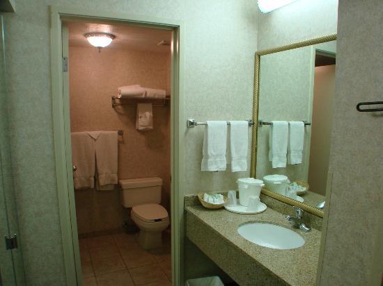 Quality Inn & Suites: average hotel