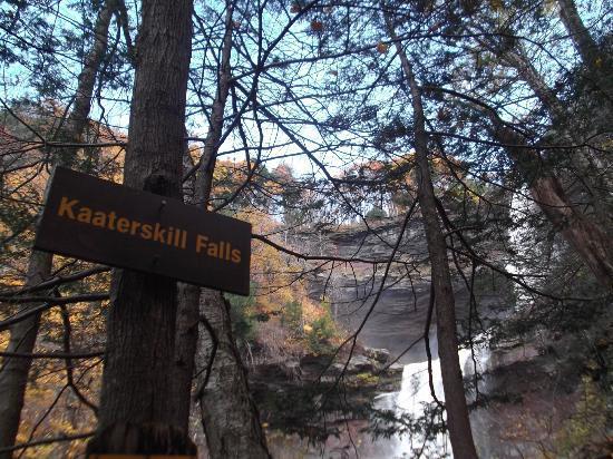 Kaaterskill Falls 사진