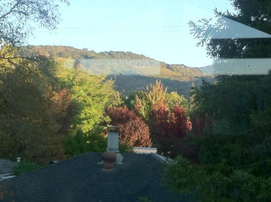 The Cottage Inn & Spa: View from the Vineyard Suite