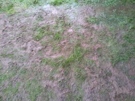 Trevella Holiday Park: more mud