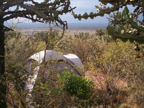 Maji Moto Eco Camp: View from the tent