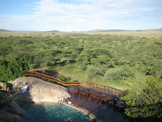Seronera Wildlife Lodge : プール