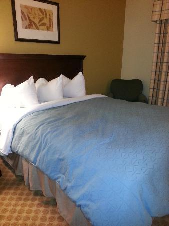 Comfort Inn & Suites Airport Dulles-Gateway: The bed was quite comfortable, with good quality linen.