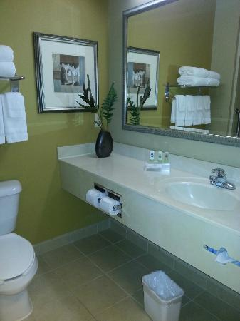 Comfort Inn & Suites Airport Dulles-Gateway: The bathroom was large and very clean.