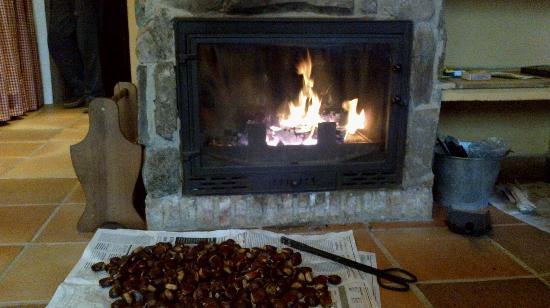 Finca La Media Legua: Un buen fuego para calentarse y de paso asar unas cuantas...mmmmm que ricas!!