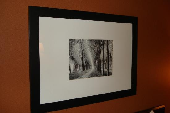 Fairfield Inn & Suites Frankenmuth: loved this picture
