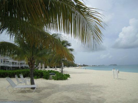 Plantana Condominiums: View from the Plantana down Seven Mile Beach