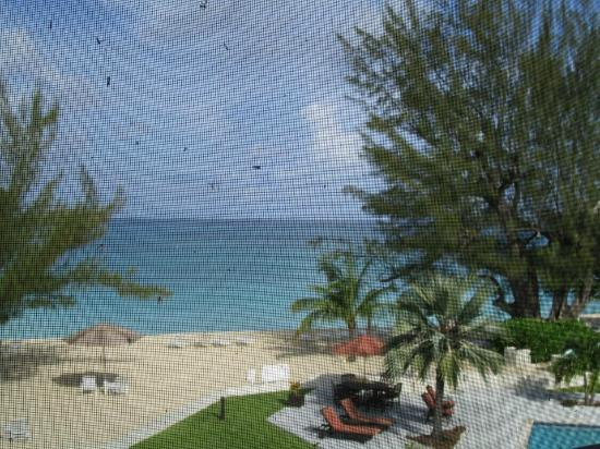 Plantana Condominiums: View from the screened in porch