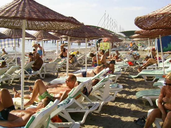 Holiday Garden Resort: Beach