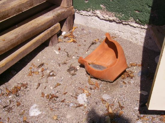 Holiday Garden Resort: Garbage on the beach.