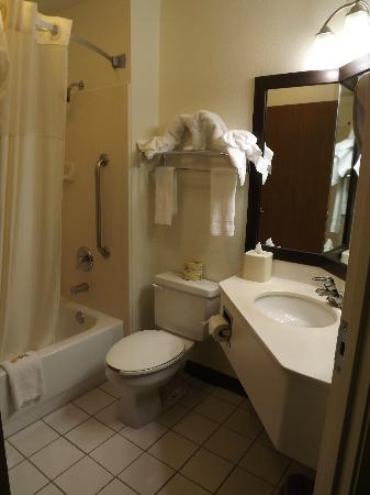 Quality Inn & Suites Denver International Airport: Bathroom