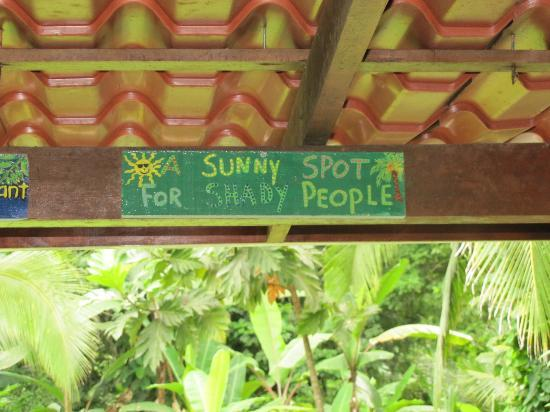 The Toucan Stay Inn