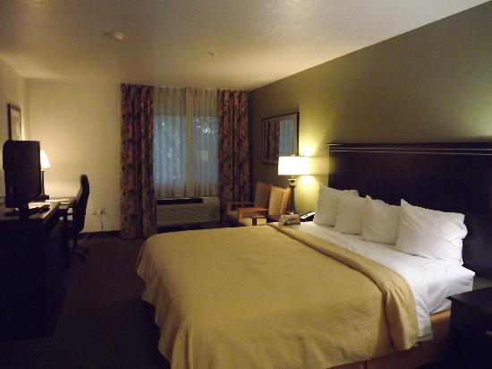 Quality Inn & Suites Denver International Airport : Hotel Room
