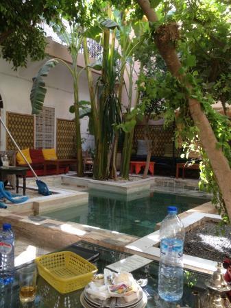 Riad So Cheap So Chic: Wonderful courtyard to relax in