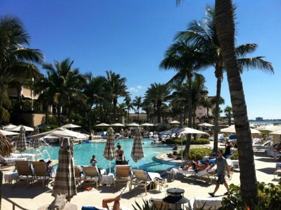 The Ritz-Carlton, Sarasota: Pool View