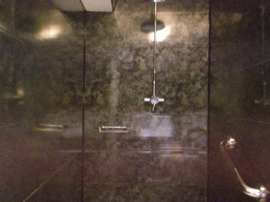 The Ansteys Lea Hotel: shower