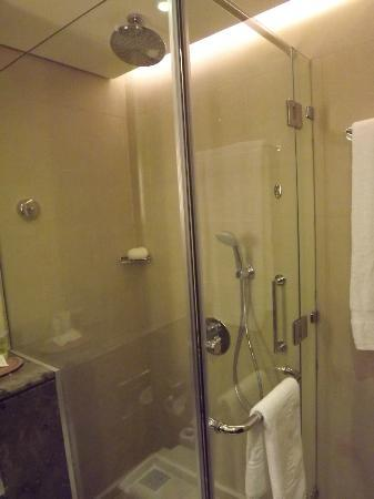 Marriott Petra Hotel: Shower