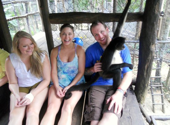 The Jungle Place - Tours: Best Experience Ever!