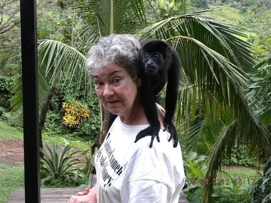 Alouatta Sanctuary: Kiki and I In Deep Conversation
