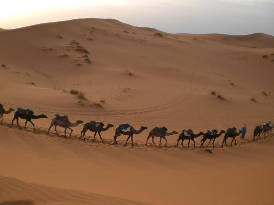 Auberge Camping Ocean Des Dunes: Excursion hostel camping ocean des dunes