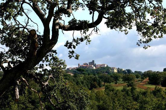 Azienda Agrituristica Bio Le Macchie Alte : Manciano vu du jardin