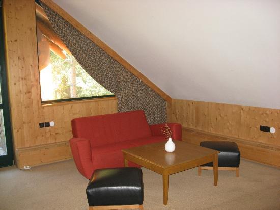 Hotel Tri Studnicky : room