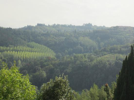 Tasty Tuscany Food Immersion Cooking Vacations: Beautiful view