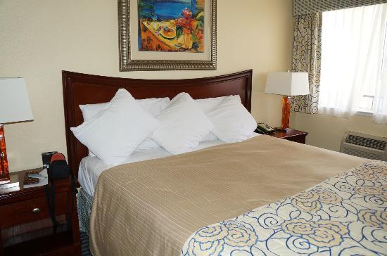 Super 8 Santa Cruz/Beach Boardwalk East: VERY comfortable bed